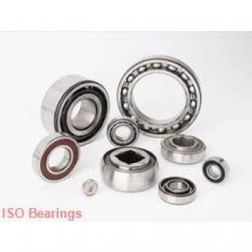 ISO BK0611 cylindrical roller bearings
